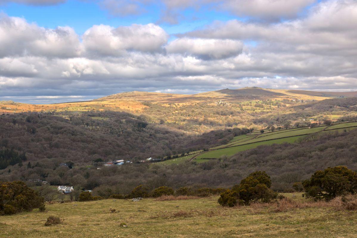 View towards Walkhampton Common Dartmoor
