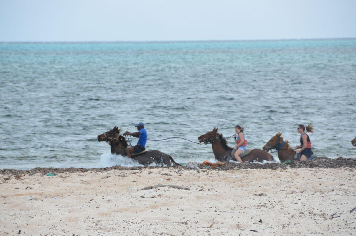 Horseback Riding and swim