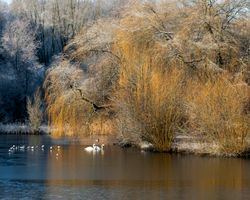 Moses Gate Country Park 6