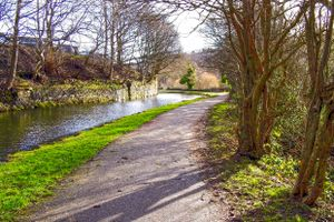 Curved along the Canal Path