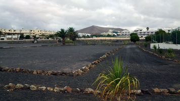 Ash Grouds in Lanzarote