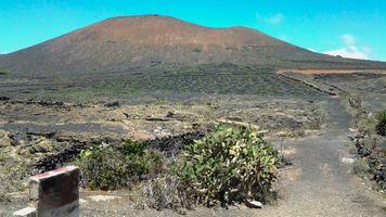 Mountain View at El Campesino Vinyard, Lanzarote