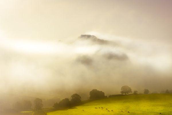 Blackdown hills morning