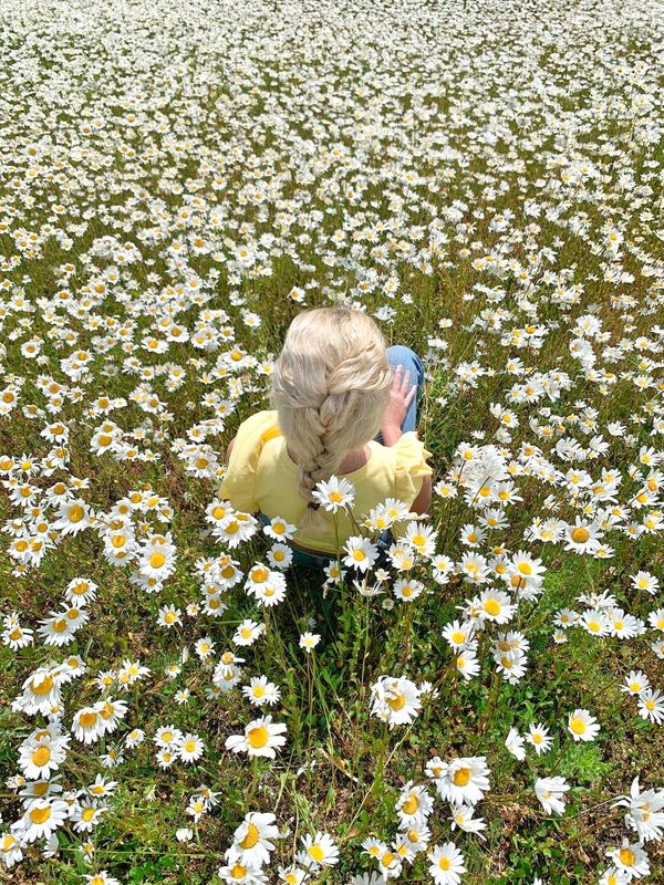 Girl in daisies