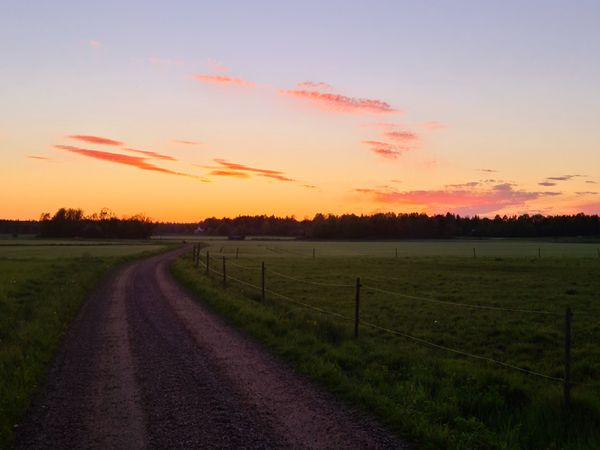 A nice evening in the countryside.