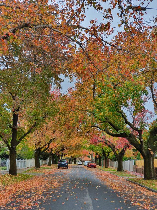 Autumn over soon