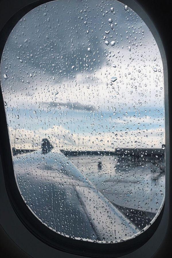 Rain fly
