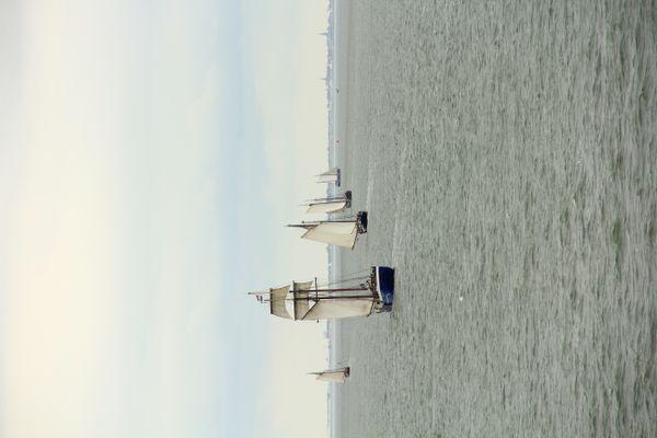 The sailing boats