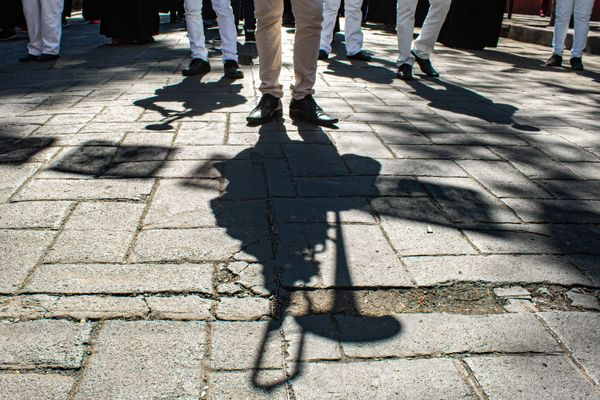 Shadow of the trumpeters