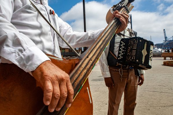 Street musician from North of Mexico