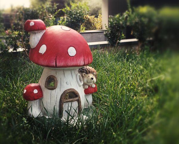 A little corner in our garden