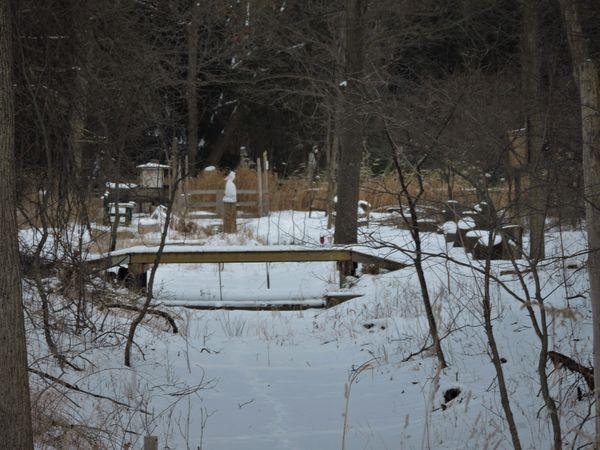 LDS-Winter Bridge ed