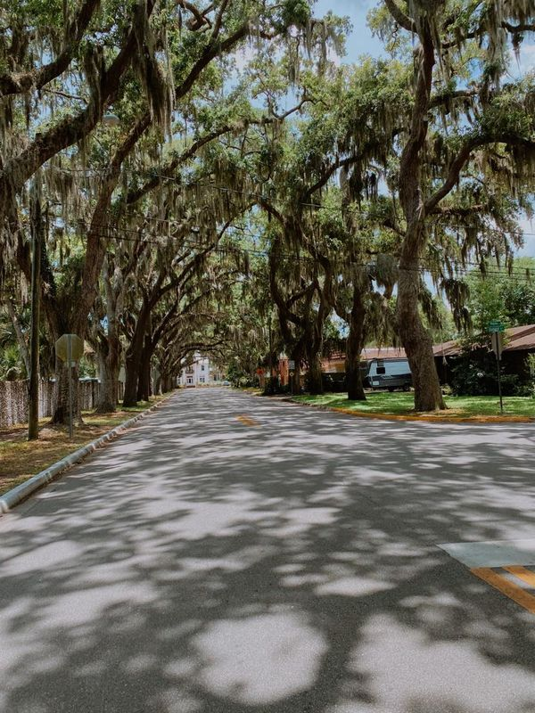 St. Augustine Streets