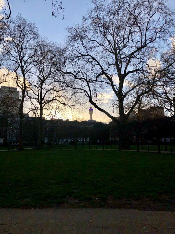 Gordon Square, London