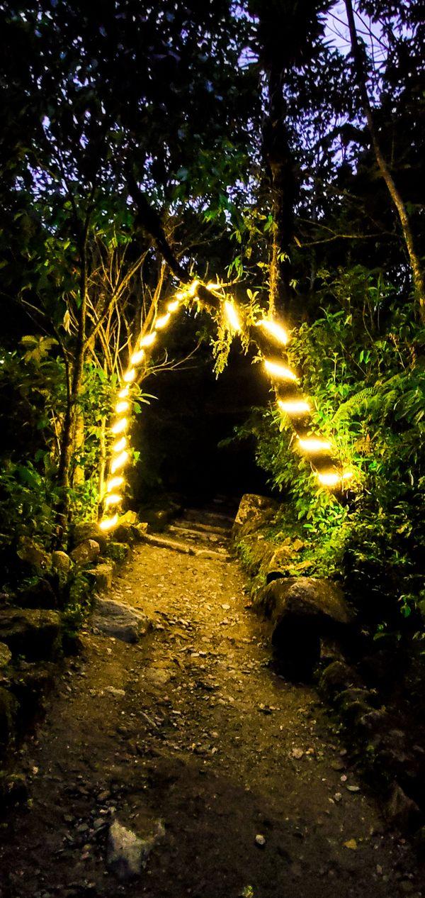 Door to forest