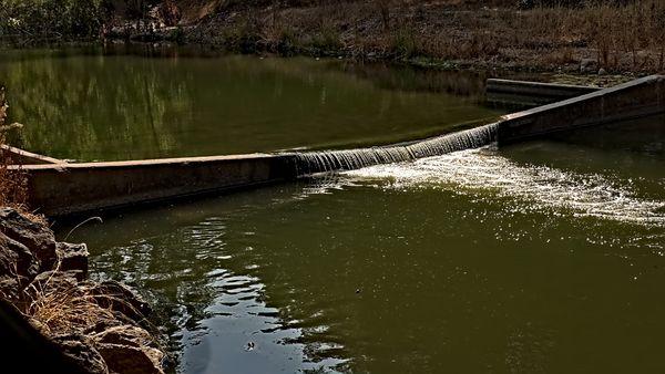 Peaceful pond behind a weir near Los Gatos, California USA