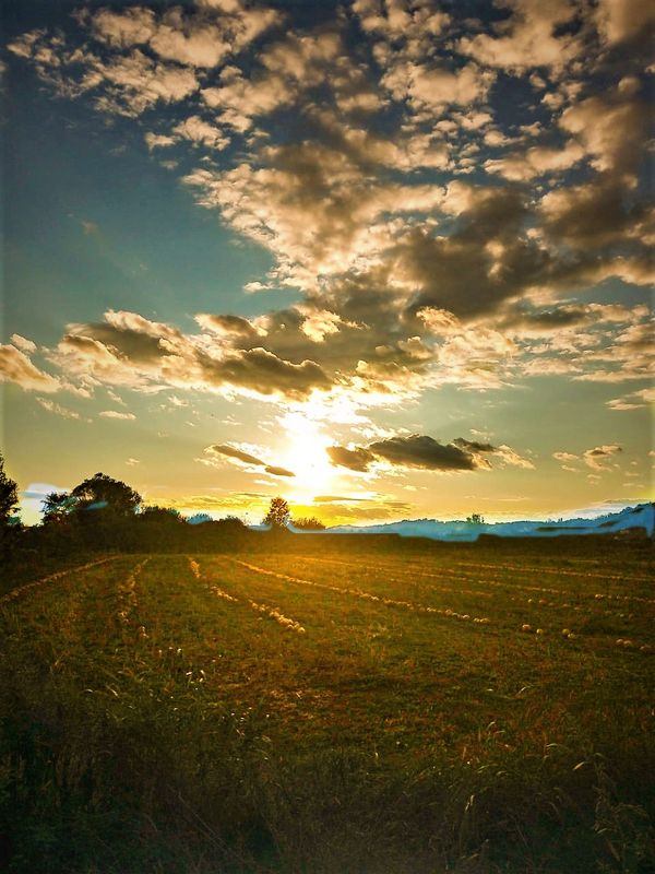 Field at sunset with beautiful sky