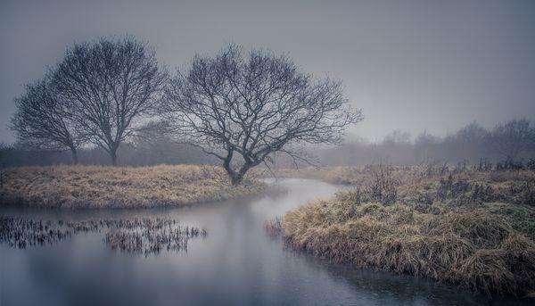 Misty Winter Morning - colour
