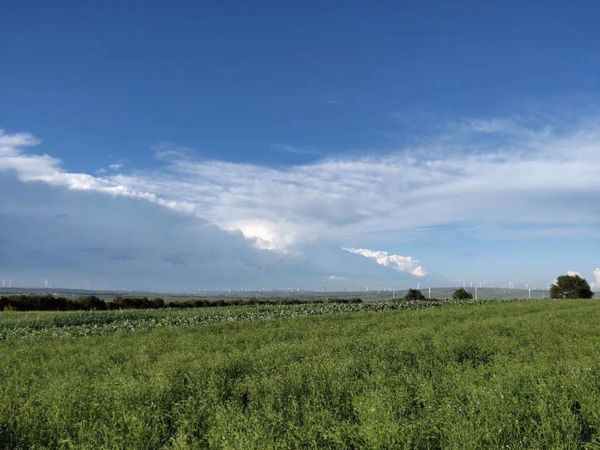 Sea of clouds and grassland