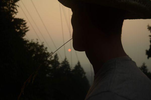 Travel Sunset Cowboy