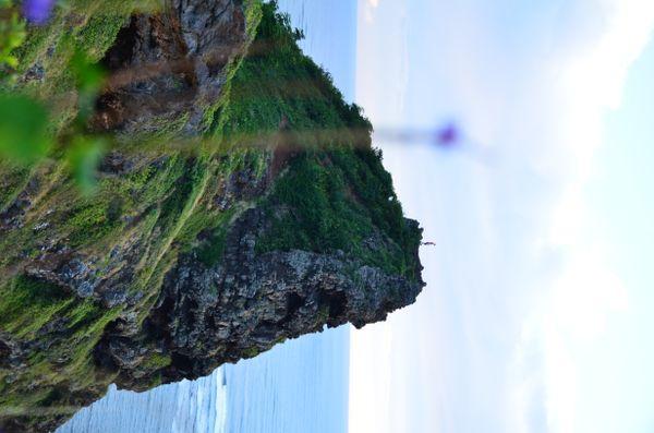 Beautiful Ocean Cliffs