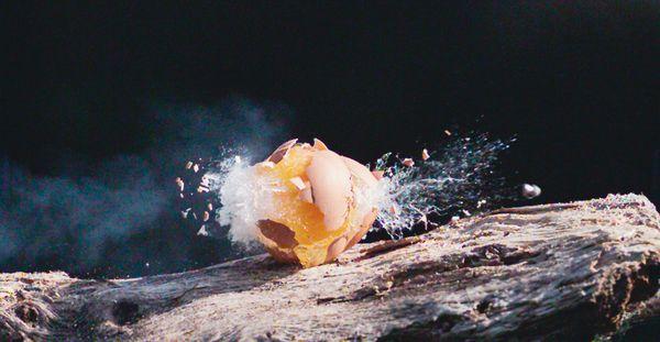 Shooting eggs