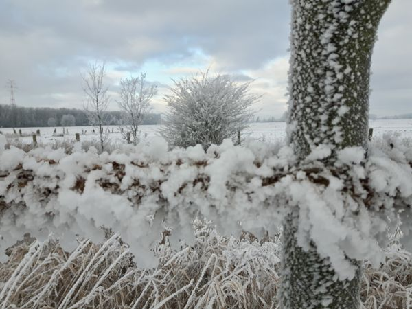 The last winter pictures :-))