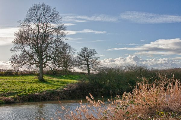 River Avon, Pershore, Late Afternoon - 2
