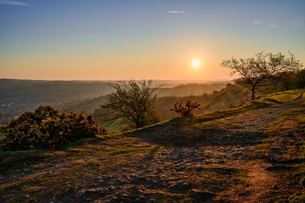 Early Light, Spring Morning