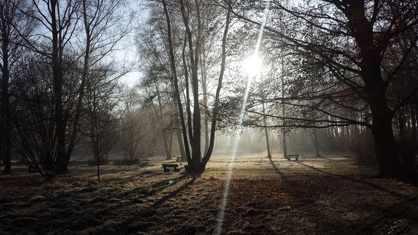 A crisp winters morning