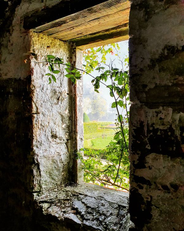 Window at Dunrobin Castle