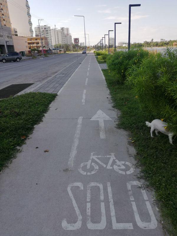 Carril para bicicletas