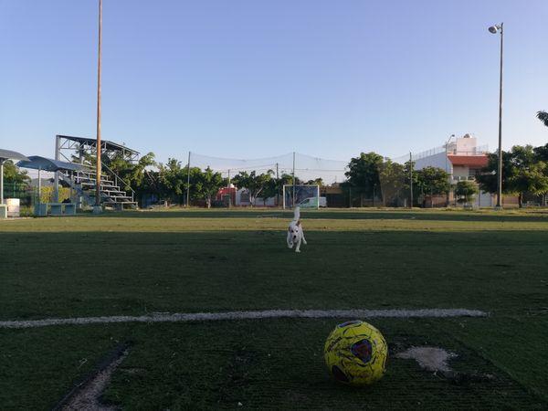 Ama jugar fútbol