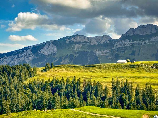 Farmers has the best views in Switzerland