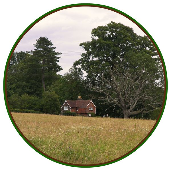 The Cottage in the Meadow