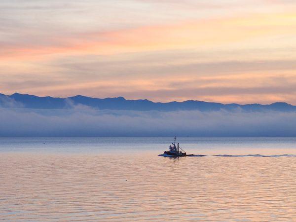 Tug Boat at sunset