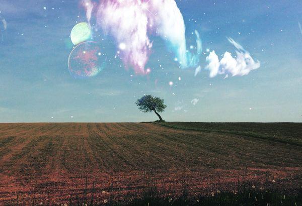 Milky Way on Earth