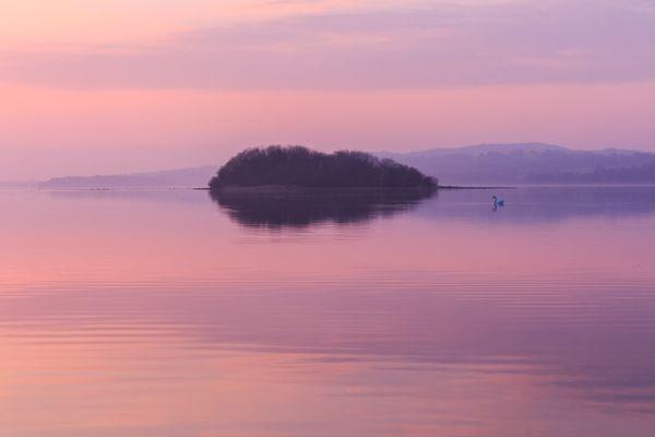 Pink Hues On Lough Erne