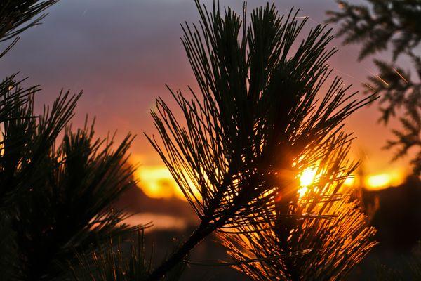 Sunrise_7
