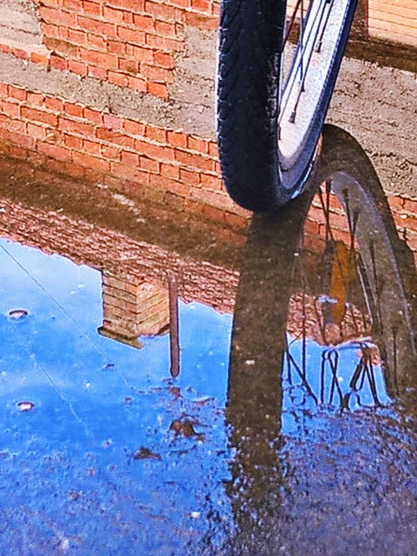 The bicycle wheel - reflection