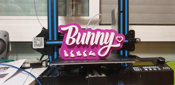 3d Printed Bunny Logo
