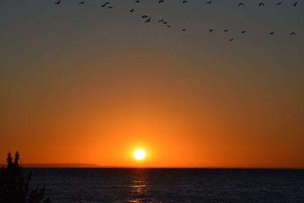 Perfect sunset!