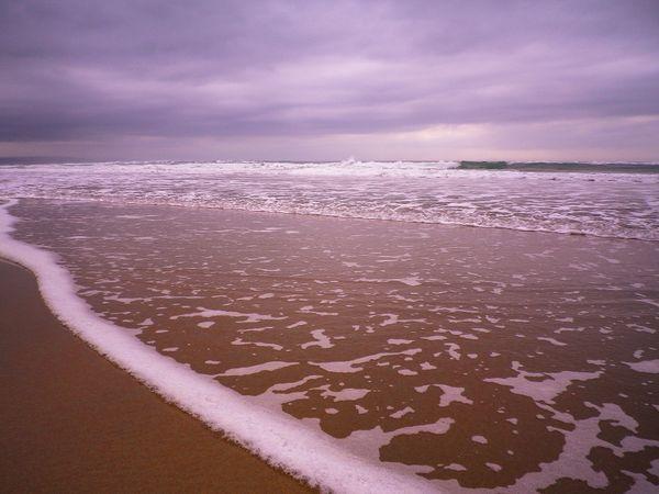 WATERS EDGE SANDYMOUTH BEACH CORNWALL