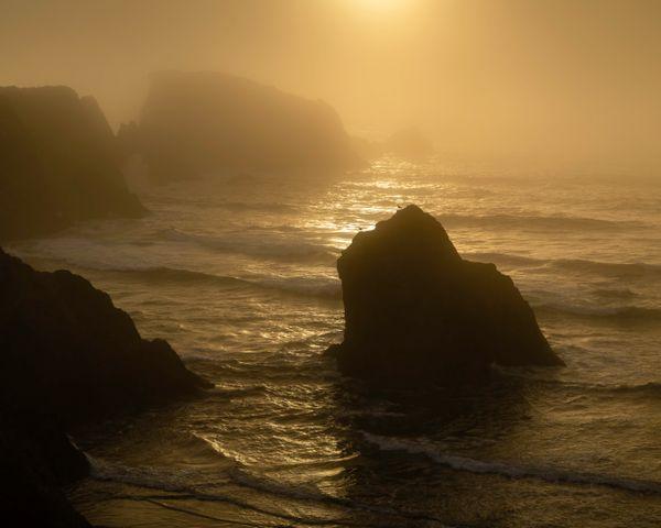 Golden Fog- Bandon Beach Oregon