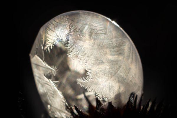 Frozen Bubble 52