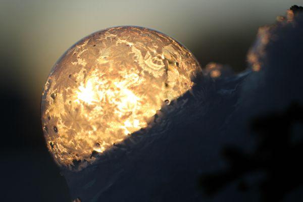 Frozen Bubble BB 7593