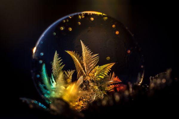 Rainbow Bubble 2