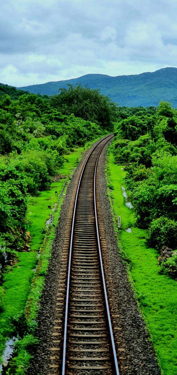 Railway Tracks in the wild