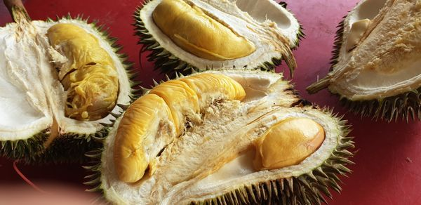 The Durian fruit cut open to reveal fleshy inside. Durian is known as the king of fruit in Asia which has a yellow flesh and delicious taste