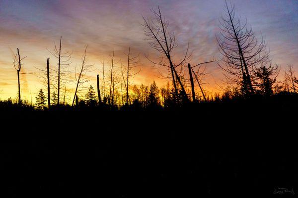 Sunrise in Fall
